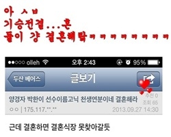 바보들의 행진 돡갤양 vs 돈갤박