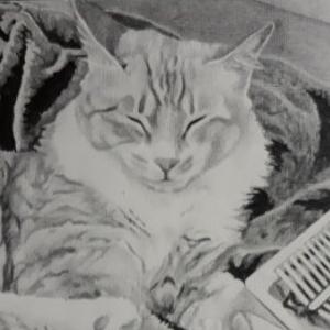 샤프 연필로 고양이 그림 그린게 자랑 스압(존못취미그림)