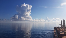 스압) 바다위에서 찍은 사진